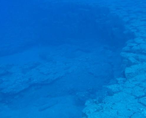 Dive Tenerife, Tauchen Teneriffa, Nurkowanie Teneryfa