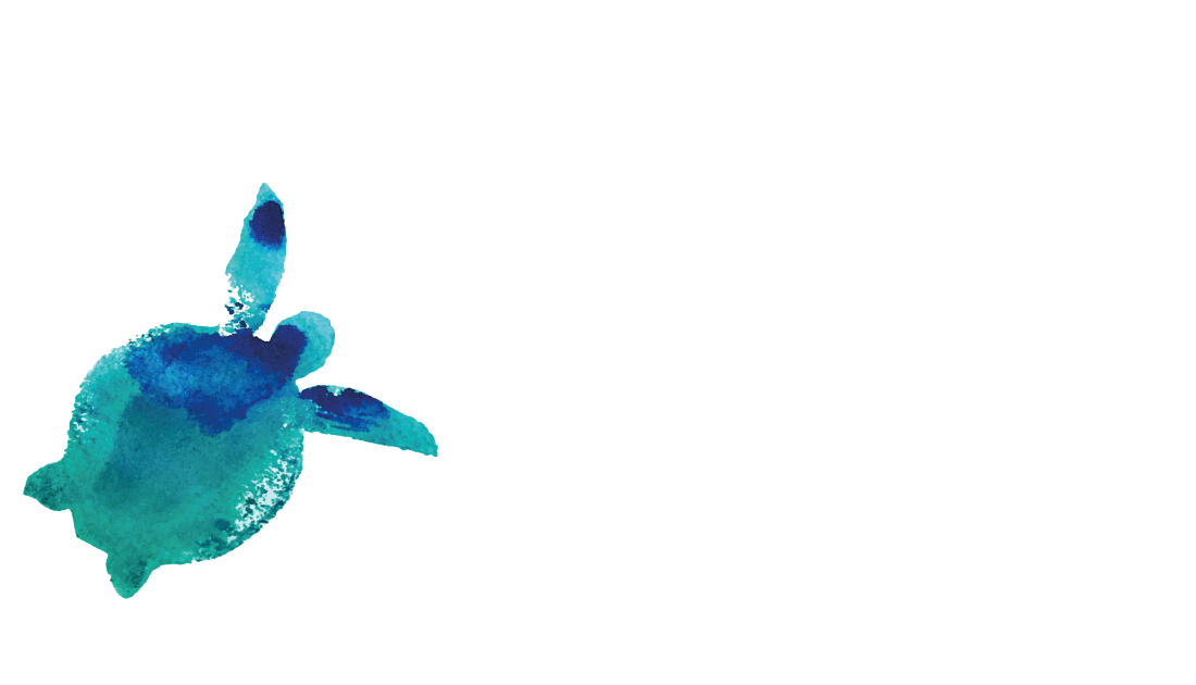 Diveria Diving Center Tenerife
